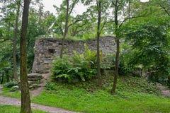 老城堡的废墟在利沃夫州停放 库存照片