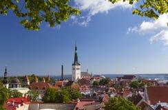 从老城市的屋顶观察台的城市全景  塔林 爱沙尼亚 免版税库存图片