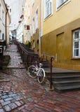 老城市的街道在雨中。 塔林 库存照片