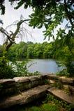 老基础俯视的池塘 库存照片