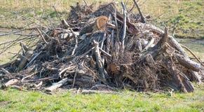 老堆木头 免版税库存照片