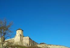 老堡垒, Kamenets波多尔斯基,乌克兰 免版税库存照片