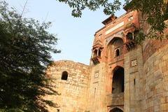 老堡垒enterance,德里 免版税库存图片