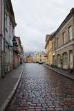 老塔林被修补的街道多雨天气的 免版税库存图片