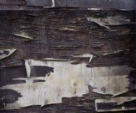 老墙壁抽象纹理有削皮油漆的 库存照片