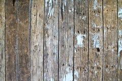 老墙壁木头 库存照片