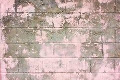 老墙壁玫瑰色难看的东西 免版税库存照片