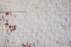 老墙壁 困厄的年迈的覆盖物纹理 自然背景的grunge 图库摄影