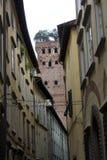 老大厦在卢卡和著名Guinigi耸立 免版税库存照片