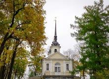 老大厦在圣彼得堡,俄罗斯 免版税库存照片