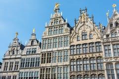 老大厦在安特卫普,比利时的中心 库存图片