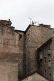 老大厦在日内瓦的中心 免版税库存照片