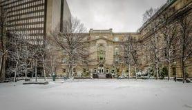 老大厦街市与雪-蒙特利尔,魁北克,加拿大 图库摄影