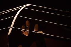 老大提琴细节  库存照片