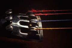 老大提琴细节  库存图片