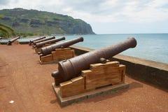 老大炮在圣但尼De La Reunion,团聚的法国国外区域和部门的资本的海边 库存图片