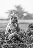 老妇人农夫 免版税图库摄影