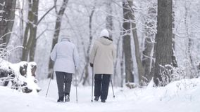 老妇人北欧走在冬天森林在降雪,背面图里 股票视频