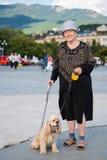 老妇人和美国西班牙猎狗 库存图片