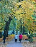 老妇人在秋天公园 图库摄影