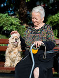 老妇人坐与猎犬的一条长凳 免版税图库摄影