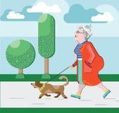 老妇人走与狗在公园 领抚恤金者走与狗 优美的祖母 领抚恤金者业余时间 外形的老妇人 退休金 向量例证