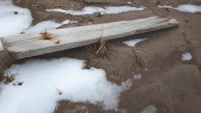 老委员会被冲上岸和结冰对海滩 免版税库存照片