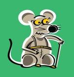 老实验室鼠在痛苦中 免版税库存照片