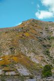老室外茶黄矿刺穿的山喜欢蚁丘 库存照片