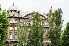 老宫殿大厦有大树的在布达佩斯,匈奴的中心 免版税库存照片