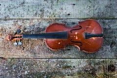 老小提琴 图库摄影