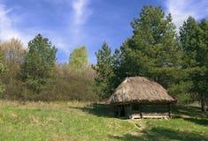 老小木小屋在森林里 免版税库存照片