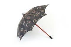 老小的伞 免版税库存照片
