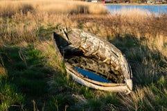 老小船和芦苇 免版税库存照片