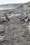 老小船船身和漂流木头在西海岸海滩 免版税库存图片