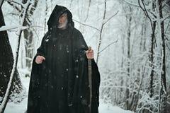 老巫术师在白色森林里 免版税库存图片
