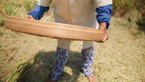 老巴厘语农厂工人妇女过滤五谷在领域 收获过程的传统亚洲农业米 慢动作的4K 股票视频