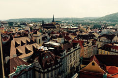 老布拉格铺磁砖的屋顶  库存图片