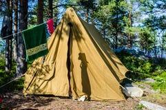 老帆布帐篷在海岛上的一个杉木森林里站立 免版税库存照片