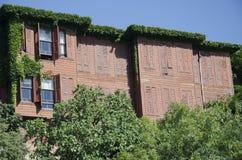 老常春藤穿的房子 免版税库存图片