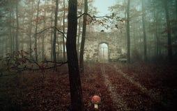 老废墟在森林里,幻想照片 免版税库存照片