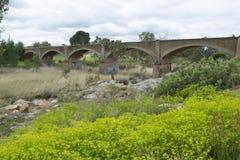 老废弃的铁路桥,帕尔默,南澳大利亚 免版税库存图片