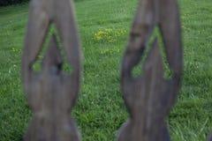 老庭院和草坪在背景中 图库摄影