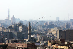 老开罗 库存图片