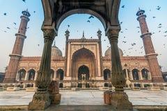 老德里印度jama masjid 库存图片