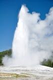 老忠实的喷泉 免版税图库摄影