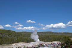 老忠实的喷泉inYellowstone国家公园美国 库存图片