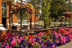 老意粉工厂餐馆在维多利亚, BC 库存照片