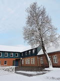 老房子和美丽的多雪的树,立陶宛 库存图片