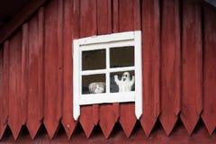 老房子在一个小城市在瑞典 免版税库存图片